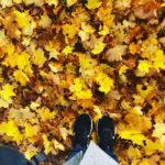 Herbstfreuden: 10 Dinge, die im Oktober auf meiner ToLove Liste stehen
